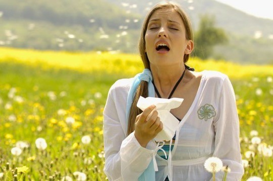 alerjik rinit