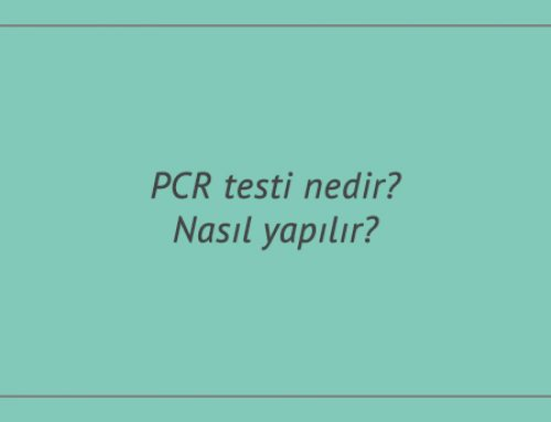 PCR testi nedir? Nasıl yapılır? PCR testi fiyatları ne kadar?