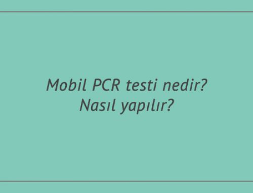 Mobil PCR testi nedir? Nasıl yapılır?